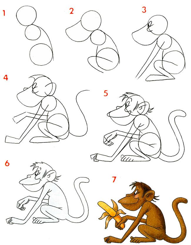 Как нарисовать обезьяну на новый год поэтапно