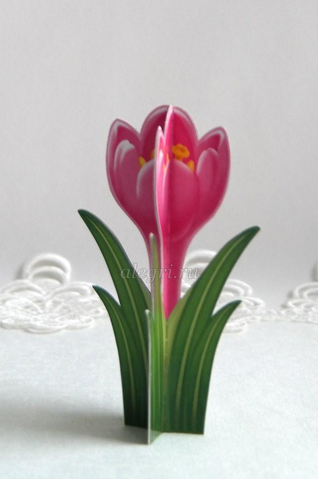 Как весенние цветы своими руками фото 967