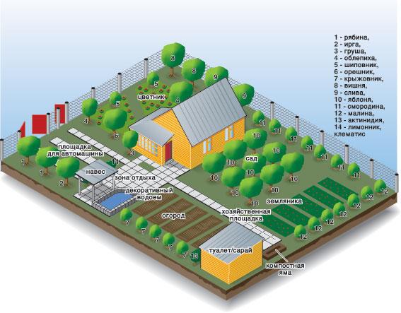 Вообще, прежде чем разбивать огород желательно нарисовать план участка с как можно более подробной схемой.