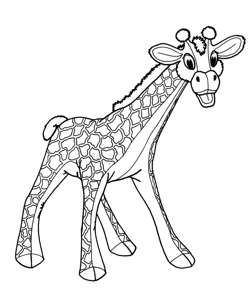 Картинка жираф для раскраски