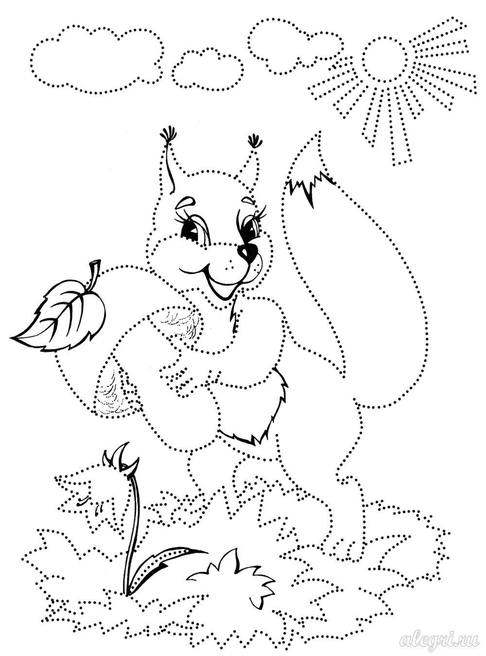 Розмальовки білочка