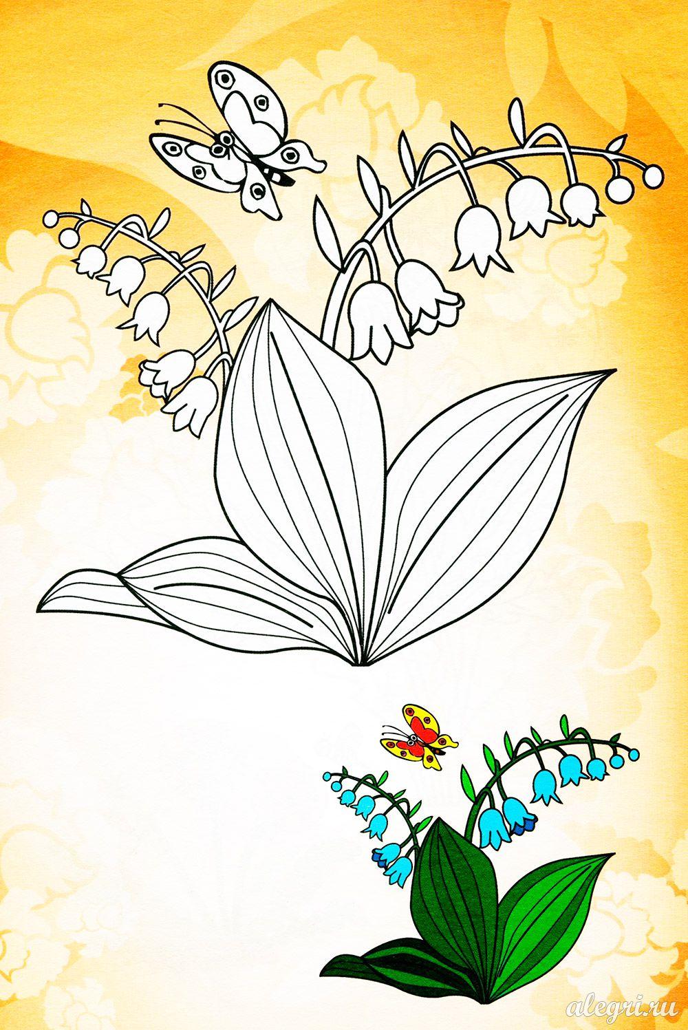 Раскраска. Цветы весной
