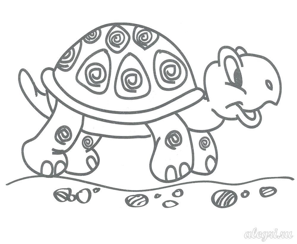 Раскраска для малышей. Черепаха