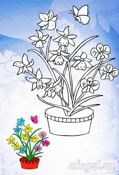 Раскраска. Весенние цветы в горшке