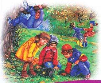 Листья кувшинки рисунок