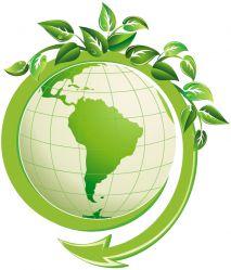 Экологический праздник для младших школьников. Сценарий