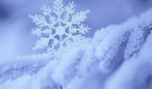 Картинки для детей прогука зимой