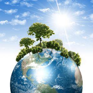 Экологические викторины для младших школьников с ответами
