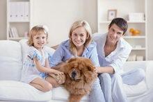 Семейное воспитание. Воспитание ребенка в семье. Функции семьи в воспитании детей